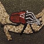 Jacqui Castle - Goliath Beetle Wandering