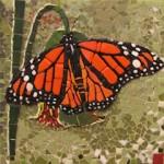 Jo Freeman - Monarch Butterfly